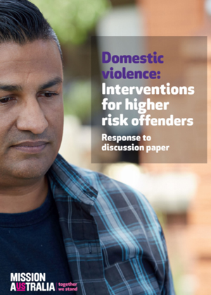 Screenshot of Domestic Violence: Interventions for higher risk offenders document