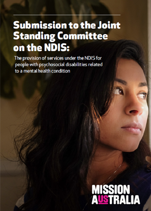 joint submission standing committee ndis thumbnail